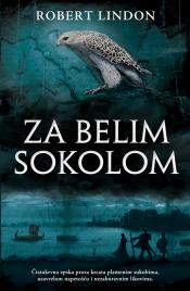 Za belim sokolom - Robert Lyndon (Hawk Quest)